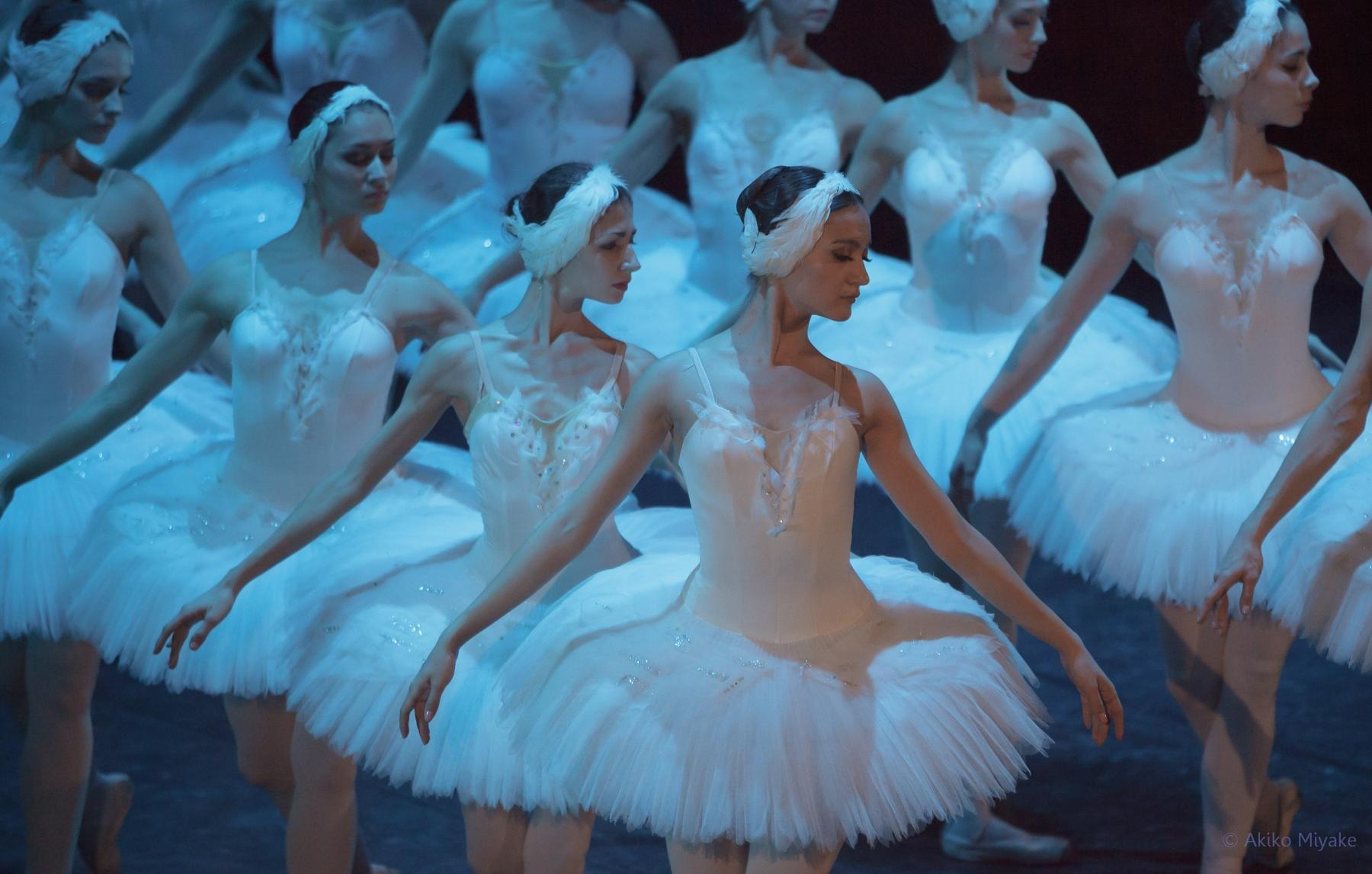 Лебединое озеро балет купить билет уфа нижневартовск городской драматический театр афиша на